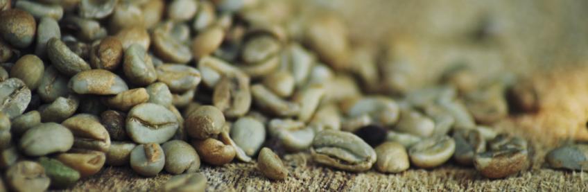 Влияет ли на вкус кофе размер зерен