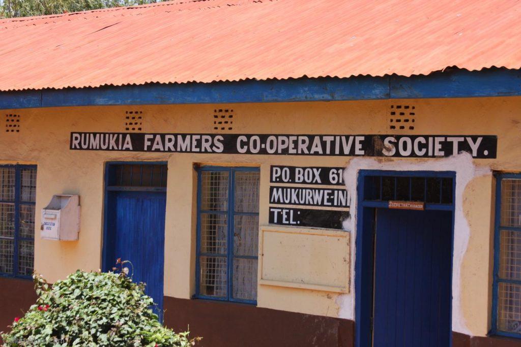 Кофейный кооператив в Кении