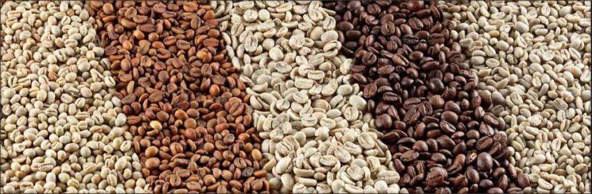 Сорта кофе: как формируется вкус